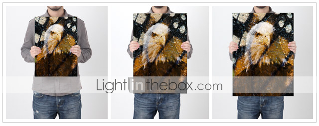 Printed Art Animal American Bald Eagle by Gordon Semmens