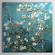 ручная роспись миндаля отрасли в цвету, Сан - Реми, c.1890 масляной живописи Винсента Ван Гога с вытянутыми кадра