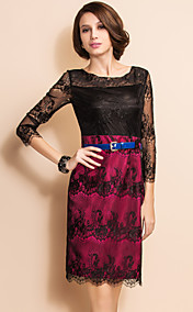 TS Charming Contrast Color Lace Dress With Belt
