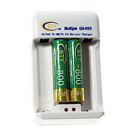 BTY 800mAh Ni-MH AAA Rechargeable Batteries 2-Pack with AC Charger