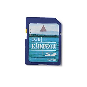 1GB Kingston SD Memory Card