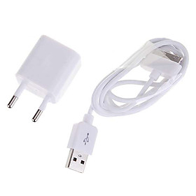 Ultra-Mini USB Power Adapter/Charger with USB Cable For All Ipod/Iphone 3G/3GS