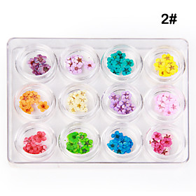 12 TYPES DRIED FLOWER Nail Art Decoration