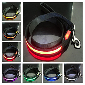 Nylon Night Safety LED Dog Leash (120cm, Assorted Colors)