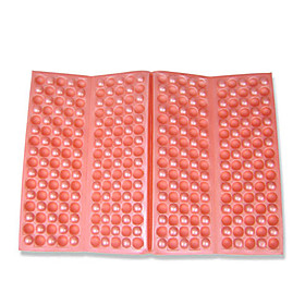 Moisture-Proof Pad for Picnic  Outdoor Sport R om Color