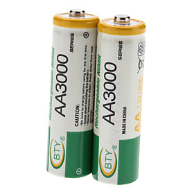BTY AA 3000mAh Rechargeable Ni-MH Batteries (1.2V, 2-Pack)
