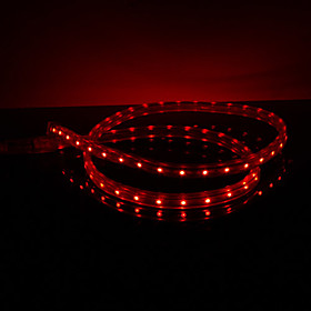Waterproof 3.5W/M 3528 SMD Red Light LED Strip Lamp (220V, Length Selectable)