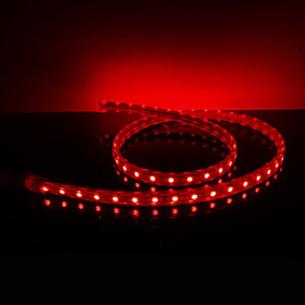 Waterproof 10W/M 5050 SMD Red Light LED Strip Lamp (220V, Length Selectable)