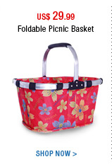 Foldable Picnic Basket