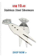 Stainless Steel Silverware