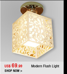 Modern Flush Light