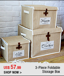 3-Piece Foldable Storage Box