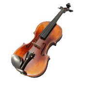 Violins